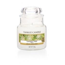 Yankee Candle Wild Mint Giara Piccola