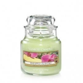 Yankee Candle Pineapple Cilantro Giara Piccola
